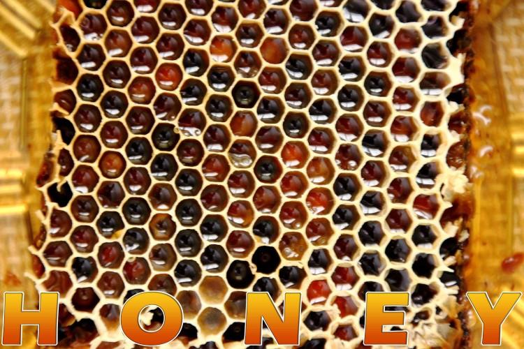 honey benefits, bees | happyfoodstube.com