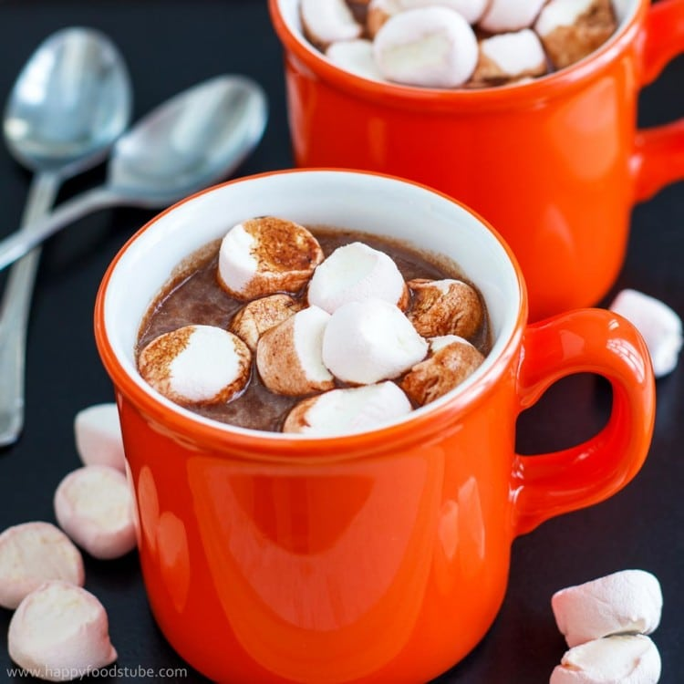 Hot Chocolate Recipes Made With Cocoa Powder
