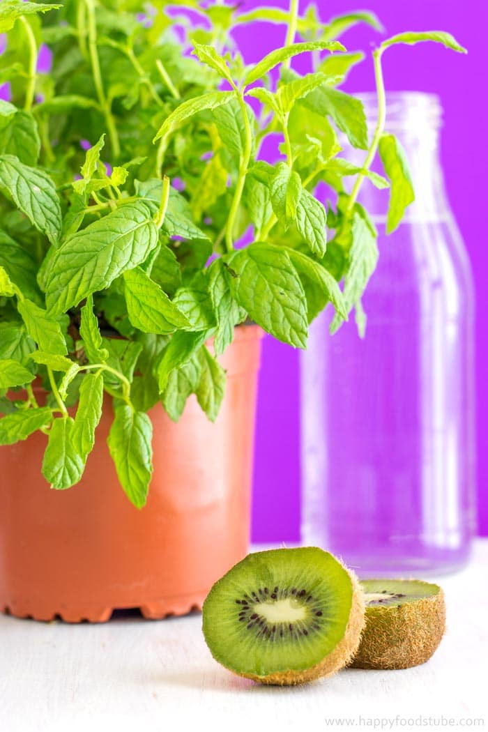 Kiwi and Mint Infused Water Recipe + 5 Tips for perfect Infused Water - Perfect for hydrating on hot summer days! | happyfoodstube.com