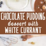 Best-Chocolate-Pudding-Dessert-with-White-Currant-Recipe