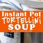 Instant Pot Creamy Tortellini Soup Recipe Picture