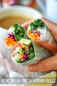 Easy Vegetarian Fresh Spring Rolls Recipe