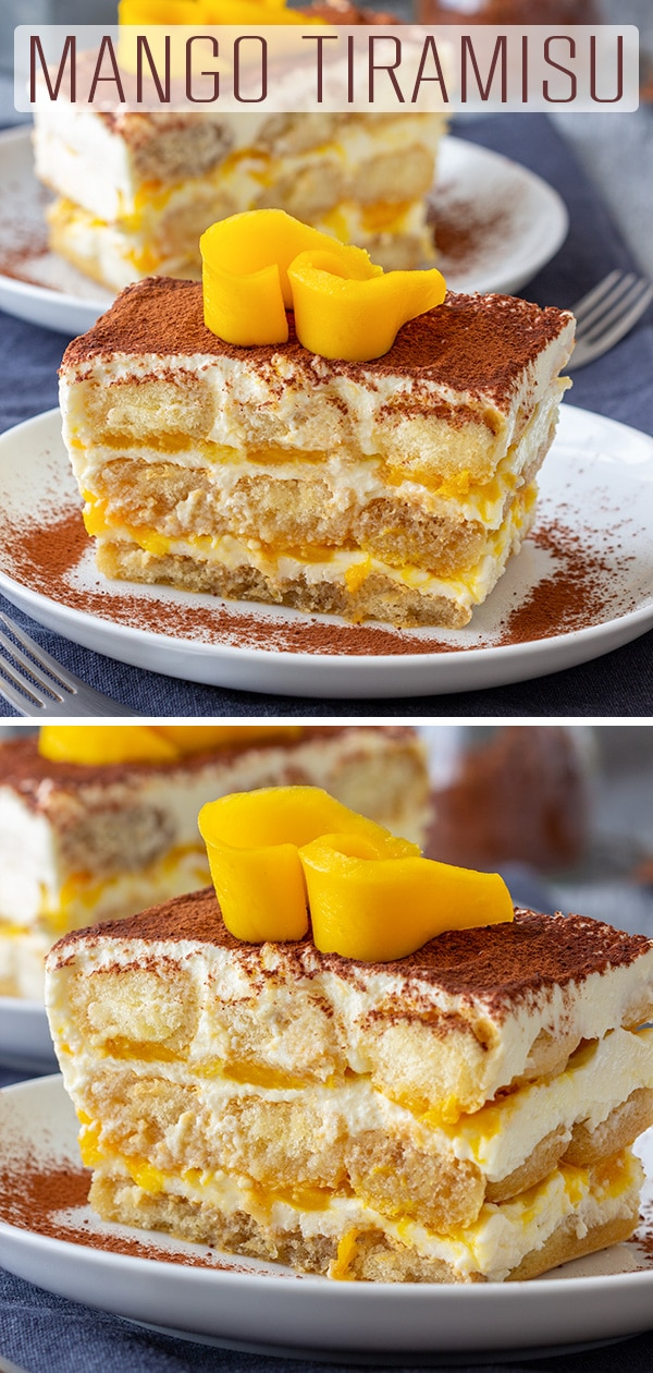Mango tiramisu is a fruity version of the classic Italian dessert. Layers of ladyfingers, mascarpone mixture and mango sauce are finished off with cocoa and some fresh mango slices. #happyfoodstube #mango #tiramisu #dessert #cake #recipe #nobake #italianfood #italian #homemade