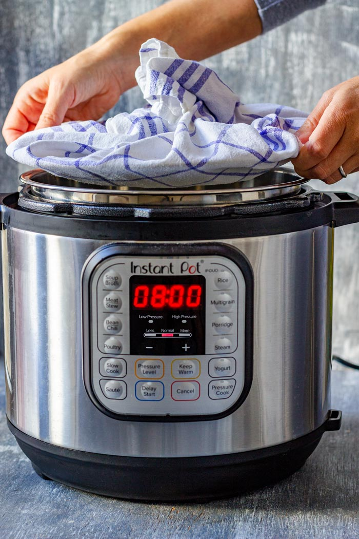 How Lonk it takes to make Instant Pot Yogurt at Home