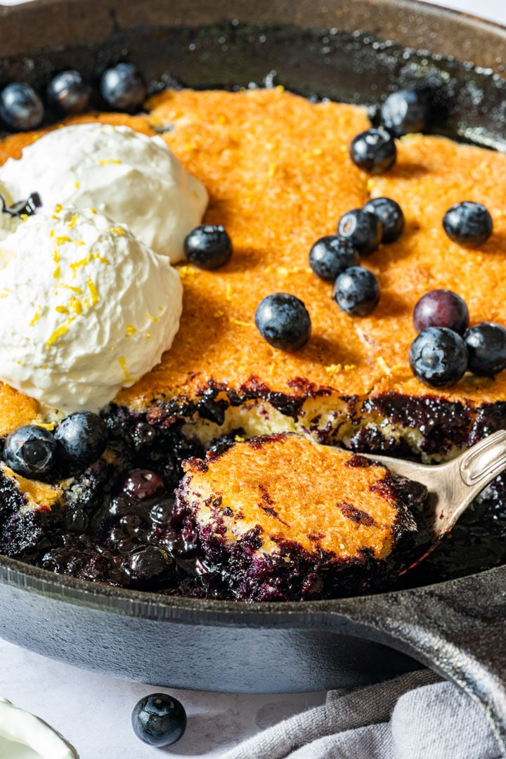 Blueberry cobbler with fresh blueberries and topped with ice cream