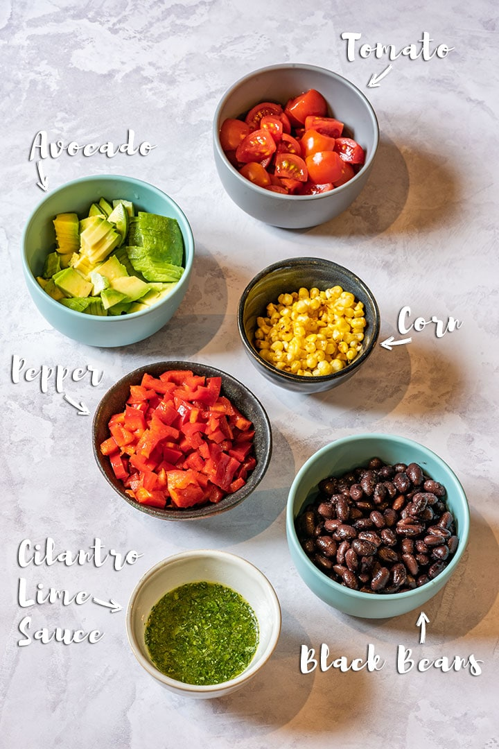 Vegetarian taco fillings - avocados, tomatos, corn, peppers, black beans and salsa